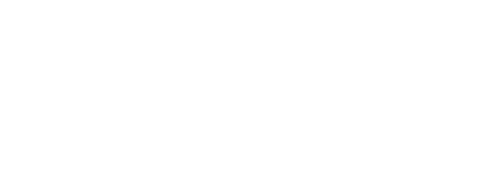 White WizeFi logo-05